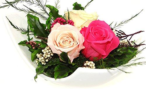 Rosen-te-amo Haltbare-Rosen Gesteck aus drei ECHTE PREMIUM Konservierte-Rosen der Farbe rosa, pink und champagne - unser EXKLUSIVES Blumen-arrangement wird handgemacht und mit Liebe gefertigt