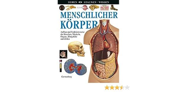 Menschlicher Körper: Aufbau und Funktionsweise der Knochen, Muskeln ...