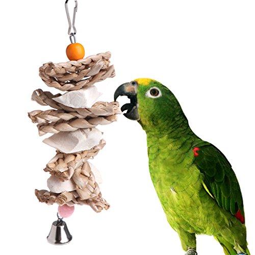Wifun Parrot Bird Toys, natur Holz Sepiaschalen Gras Kauen Bite Aufhängen Käfig Bell Swing