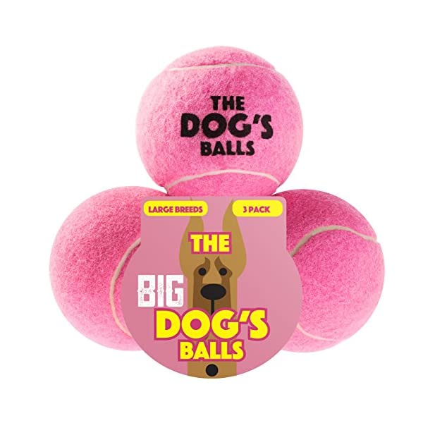 The Dog's Balls, Dog Tennis Balls in 3 Sizes, 4 Colors, Quality Dog Toys, Premium Strong Dog Ball 1