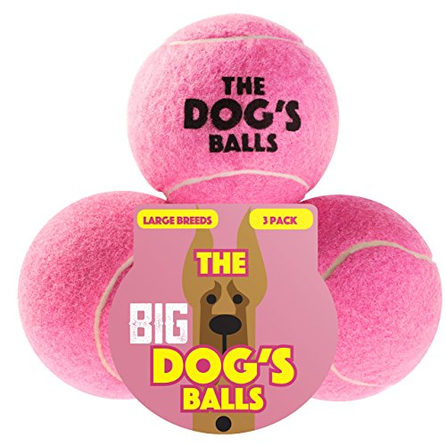 Der Hund 's Ball (Canvas-flyer)