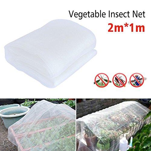 BETTERLE 12Garten Schutz Netz, Insekten Moskitonetz Bird Bug Net Barrier Gemüse Jagd Rollo Netz für Schutz Pflanzen Obst Blumen Gemüse oder Windows (Netting Barrier)