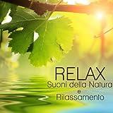 Relax, Suoni della Natura e Rilassamento