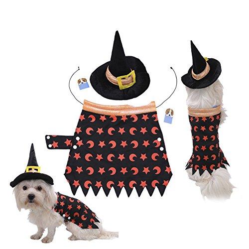 häre Haustier Kleidung Halloween Kürbis Kostüm mit Kapuze Kleidung geeignet für Mittelklein) Hunde Katzen und andere kleine Tiere (Mj Halloween-kostüme)