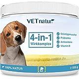 VETnatur 4in1 Grünlippmuschel-Pulver für Hunde mit Wirkungssteigerung durch Antioxidans + Präbiotika + Vitamin B + Zink/Eisen | 100% Natur | Hergestellt in Deutschland (500 g)