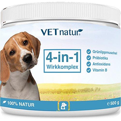VETnatur 4in1 Grünlippmuschel-Pulver für Hunde mit Wirkungssteigerung durch Antioxidans + Präbiotika + Vitamin B + Zink/Eisen   100% Natur   Hergestellt in Deutschland (500 g)