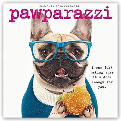 Pawparazzi 2020 Calendar