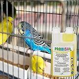 Bio-Reiniger und Geruchsneutralisierer Probisa