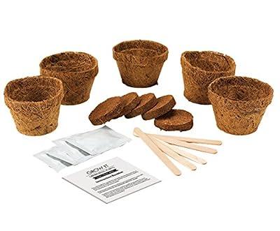 Gift Republic Grow It Geschenkset Fleischfressende-Pflanzen-Pflanzset von Gift Republic auf Du und dein Garten