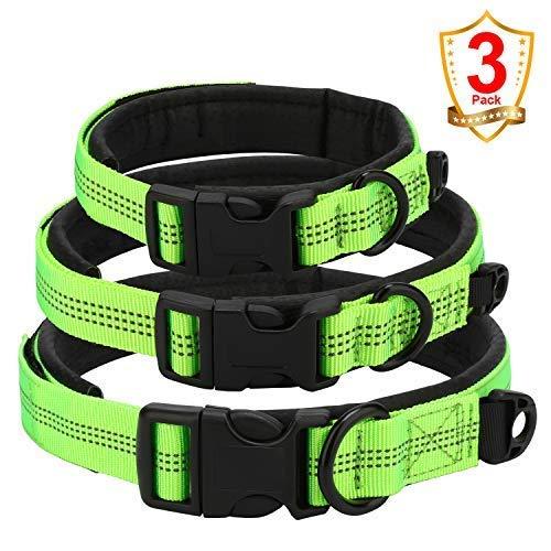 Legend Sandy Reflektierendes Hundehalsband, grünes Nylon, Hundehalsband, verstellbar, mit Ausreißverschluss, Größe S, M, L, Gepolstertes Hundehalsband, weich und bequem für Hunde, 3er-Packung