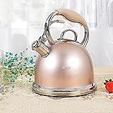PLL Europäische Art 304 Edelstahl verdickte Wasserkocher kochendem Wasser Pfeife Haushalt Wasserkocher Gaskocher Wasserkocher