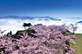 1000 Teile Puzzle Kirsche blühen Takeda Castle - Hyogo Ziel Puzzle Guru (50x75cm)