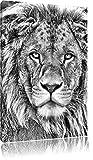 Monocrome, bildschöner Löwe, Format: 120x80 auf Leinwand, XXL riesige Bilder fertig gerahmt mit Keilrahmen, Kunstdruck auf Wandbild mit Rahmen, günstiger als Gemälde oder Ölbild, kein Poster oder Plakat