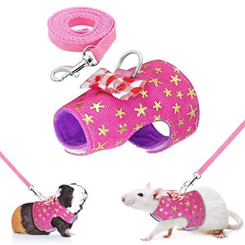 Cettkowns - Arnés Senderismo Mascotas pequeñas