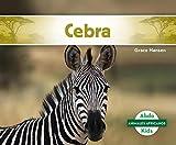 Cebra (Zebra) (Animales Africanos/ African Animals)