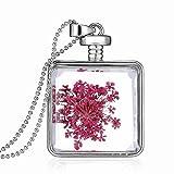 Relovsk Collar De Joyería Collar De Europa Y América Exquisita Pareja Romántica Collar De Flores Secas Colgante De Cristal