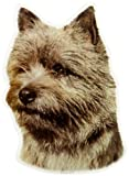 Schwandt Heimtierbedarf World Stickers 13211 Aufkleber 2 Stück ca. 140 x 160 mm für Warnschild Cairn Terrier Kopf