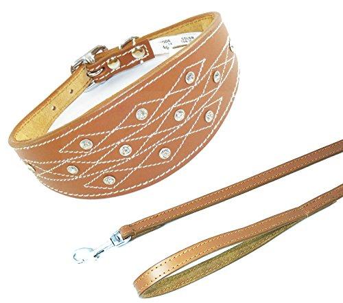 25,4-30,5cm Tan Italienisches Windspiel Leder Halsband mit Naht Design Set Passende Leine
