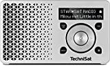 TechniSat DIGITRADIO 1 Digital-Radio Made in Germany (Klein, Tragbar, für Outdoor Geeignet) mit Lautsprecher, OLED-Display, DAB+, UKW, Favoritenspeicher und leistungsstarkem Akku, Silber