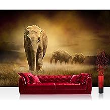 Fotomural, 300x 210cm Premium Plus fotográfico pintado–cuadro de pared–African Savanna–sabana africana elefante elefantes Hierba Paisaje–No. 011