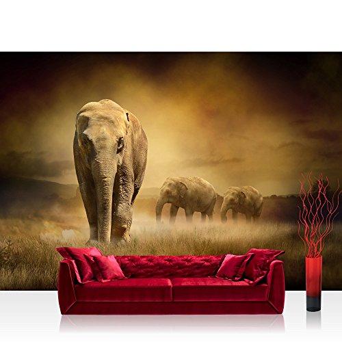 Fotomural, 300x 210cm Premium Plus fotográfico pintado–cuadro de pared–African Savanna–sabana africana elefante...