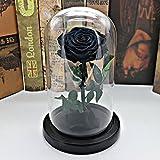 HAOLY Strohblumen,Kreative Geschenke,Ewig Leben stieg im Glas-D 15x15x22cm(6x6x9inch)