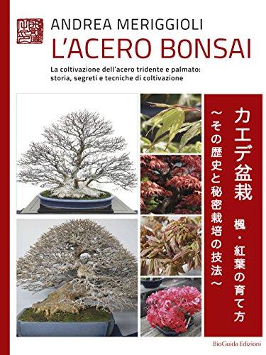 L'acero bonsai. La coltivazione dell'acero tridente e palmato: storia, segreti e tecniche di coltivazione