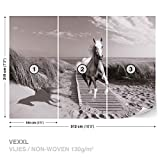 Weißer Pferd Strand Grau Fototapete Wandbild Fototapeten Bild Tapete VLIES (EasyInstall) (3136WS)