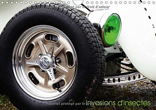 Invasion d'insectes (Calendrier mural 2017 DIN A4 horizontal): Un calendrier pour les passionnés de la Coccinelle de Volkswagen (Calendrier mensuel, 14 Pages) (Calvendo Mobilite) (Racing Motoren Horizontale)