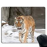Tiger-Walking-Mauspad im Schnee, rutschfeste Gummibasis und genähtes Rand-Gaming-Mauspad
