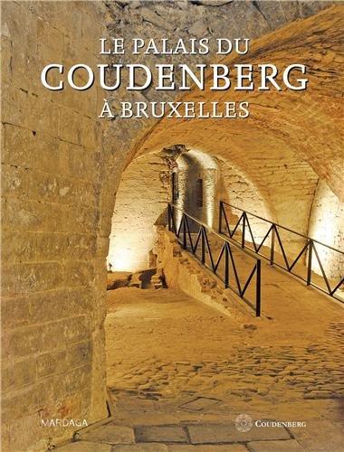 Le palais du Coudenberg à Bruxelles : Du château médiéval au site archéologogique