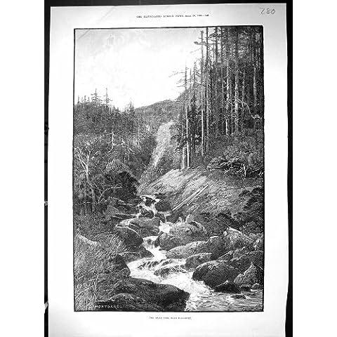 Impresión Antigua del Río 1890 Torc Killarney Irlanda Wall Street Nueva York Ameri…