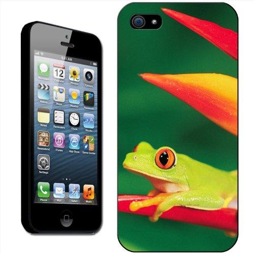 Fancy A Snuggle 'Grüner Frosch auf Blatt' Hard Case Clip On Back Cover für Apple iPhone 5C Red Eye Tree Frog
