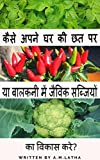 KAISI APNI GHAR KI CHAT PHAR YA BALCONY MEY JOVIC SABJIYONKA VIKAS KAREY?: gardening book in hindi (Hindi Edition)