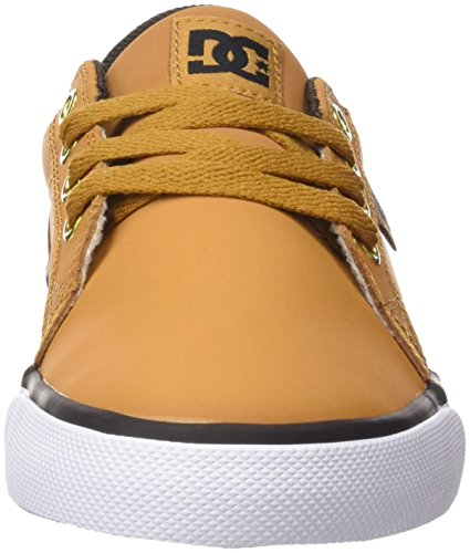 DC Shoes Council, Scarpe da Ginnastica Bambino Marrón (Wheat / Dk Chocolate)