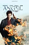 Angel: After the Fall, Vol. 4 by Joss Whedon (2009-07-30)