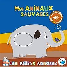 Amazon Fr Bebe Tchoupi Dans Les 3 Mois A Venir Livres