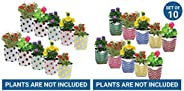 TrustBasket Dotted Grow Bags (Multicolour, Pack of 10) and TrustBasket Stripe Grow Bags (Multicolour, Pack of
