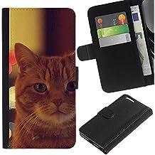 EuroCase - Apple Iphone 6 PLUS 5.5 - garfield ginger orange mongrel cat - Cuero PU Delgado caso cubierta Shell Armor Funda Case Cover