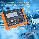 PEAKMETER Megómetro digital 50-1000V,Probador de resistencia de aislamiento Earth Resistance Tester -Automatic-AC/DC Voltaje Tester (MS5203)
