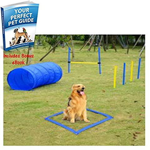New And Sturdy Pet Agility Training Equipment Dog Play Run