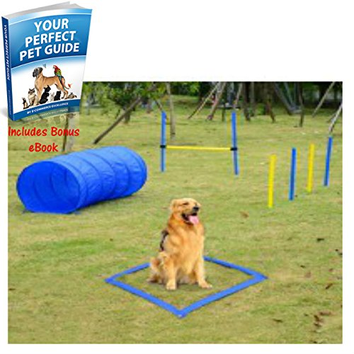 new-and-sturdy-pet-agility-training-equipment-dog-play-run-jump-obedience-training-set-promotes-your