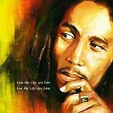 Bob Marley Love The Life You Live Live The Life You Love Reggae Musique-40,6cm (40cm) Taie d\'oreiller Housse de coussin