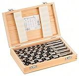 Bosch Professional 6tlg. Holzschlangenbohrer-Set mit 1/4
