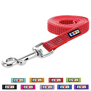 PawtitasTM 6-ft Reflective Dog Leash Extra Small/Small Red 5/8 Inch by PAWTITAS 3