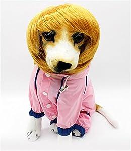 Stillshine perruque animal de compagnie Pet Supplies Pet chien chat Vêtements pour Coiffe