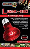 reptilepro Infrarot-Wärmestrahler für max Heat Reptile rot Glo Repti Leuchtmittel