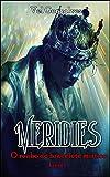 Meridies: O roubo do bracelete místico (Serie Meridies Livro 1) (Portuguese Edition)