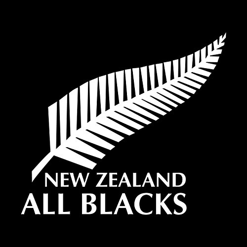 Preisvergleich Produktbild Stickersnews - Sticker All Blacks rugby coupe du monde Dimensions - 10x10cm
