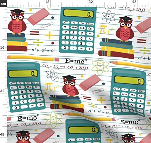 , Radiergummi, Bleistift, Schule, Algebra Stoffe - Individuell Bedruckt von Spoonflower - Design von Lisa Kubenez Gedruckt auf Baumwoll Spandex Jersey ()